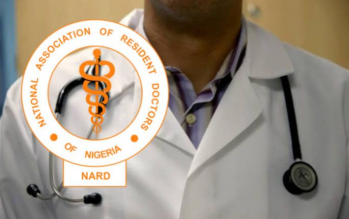 NARD rejects FG's terms, doctors' strike continues - First News NG